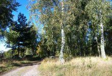 Naturskön tomt på Knislinge Väster.