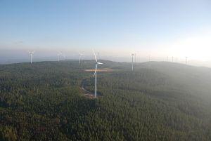 Bild på vindkraftverk.