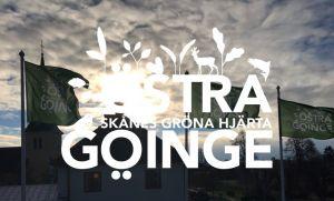 Näringsliv flaggor Skånes gröna hjärta