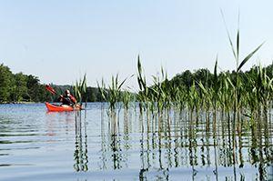 Kille paddlar kajak på Immelnsjön